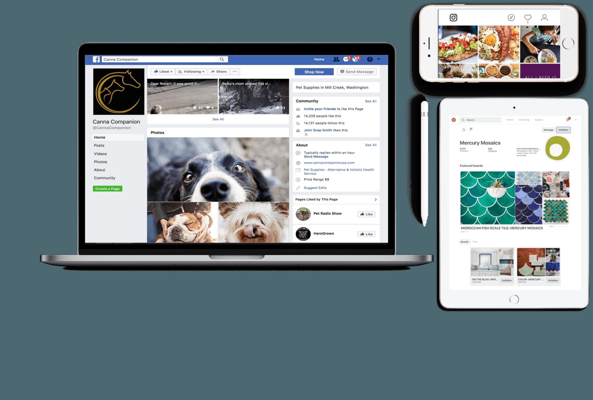 Social Media Marketing | Snap Agency